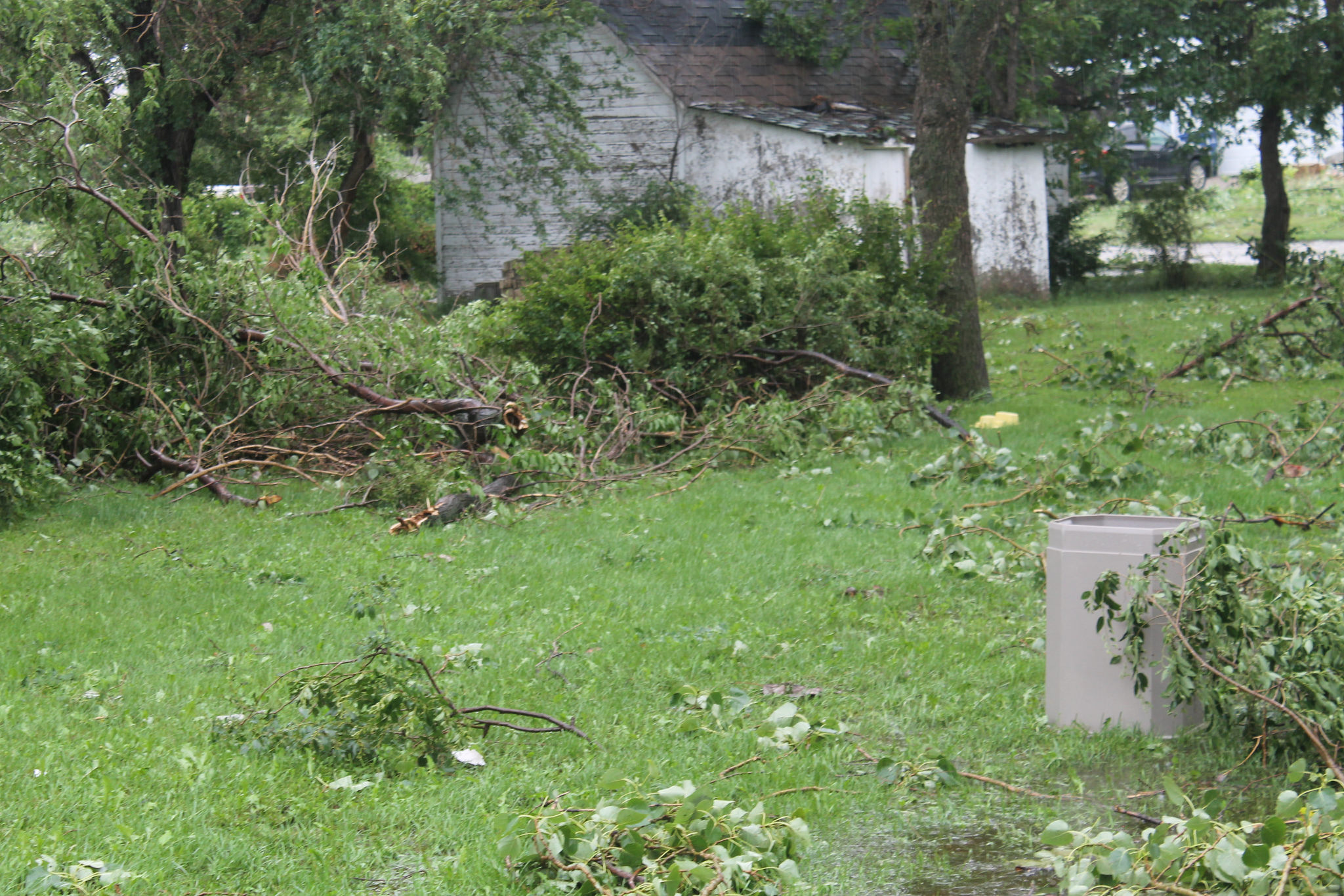 4 Tips For Cleaning Your Yard Of Trees Amp Debris After A